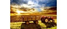Селскостопанство